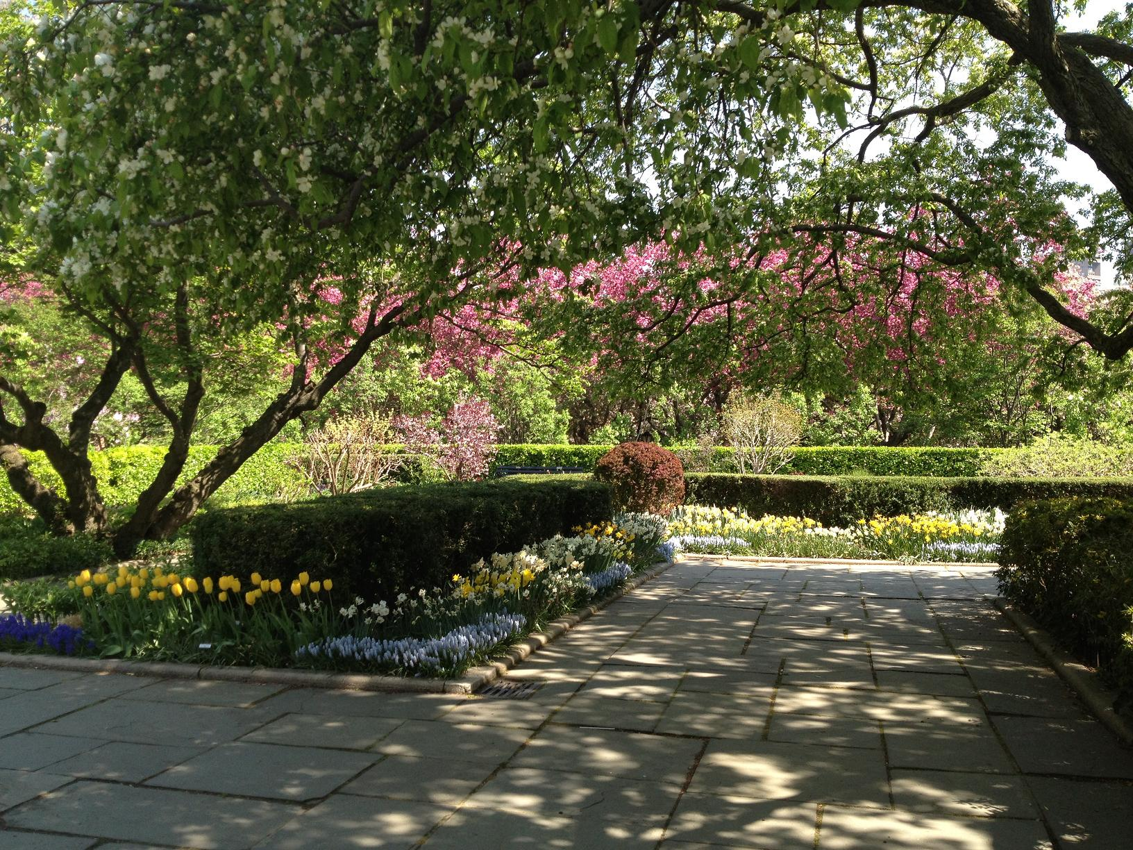 CENTRAL PARK CONSERVANCY GARDEN 1