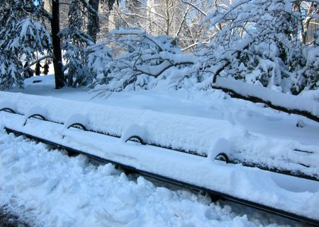 Central Park Bench in Snow