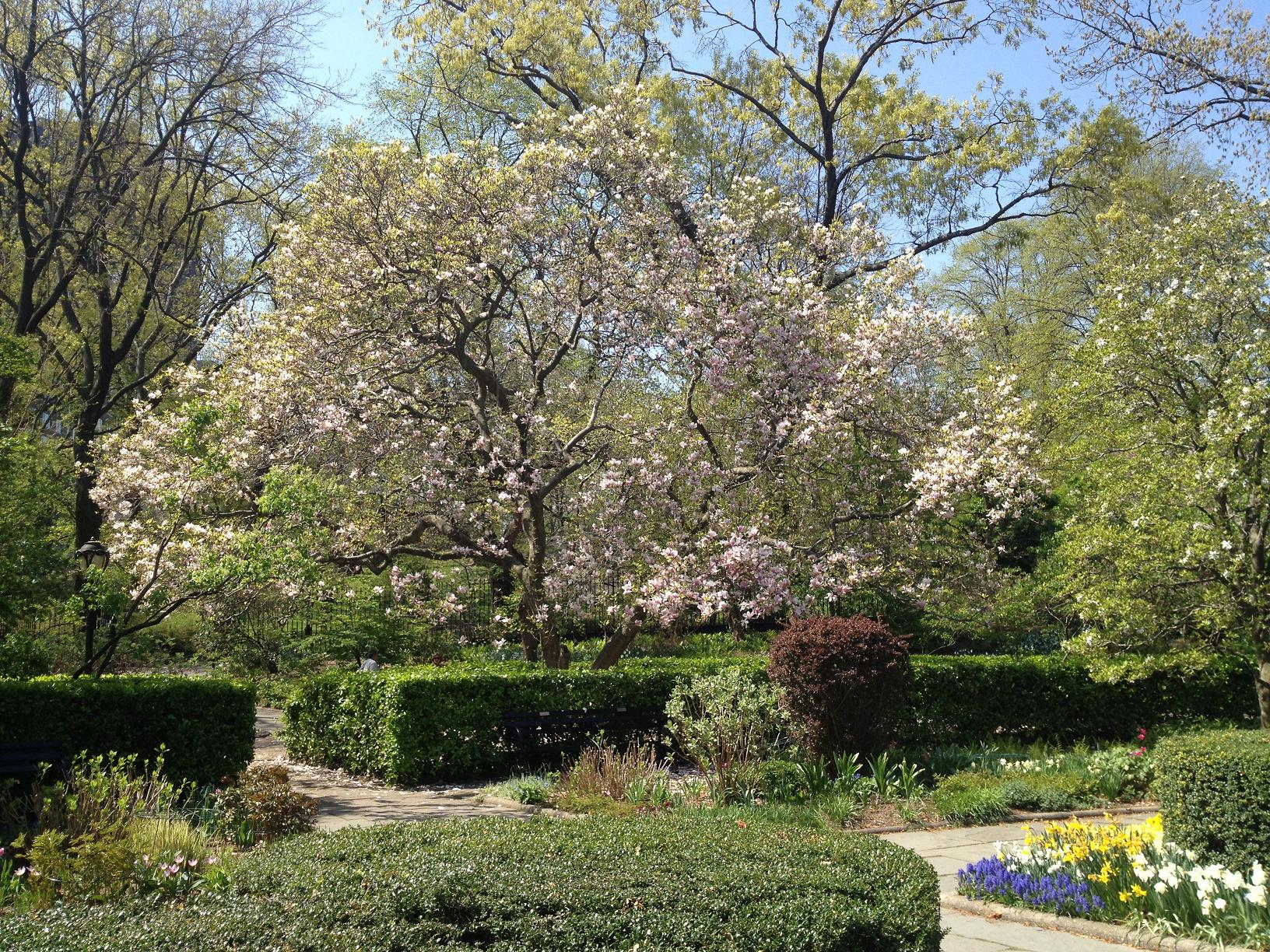 Central Park Conservancy Garden 2
