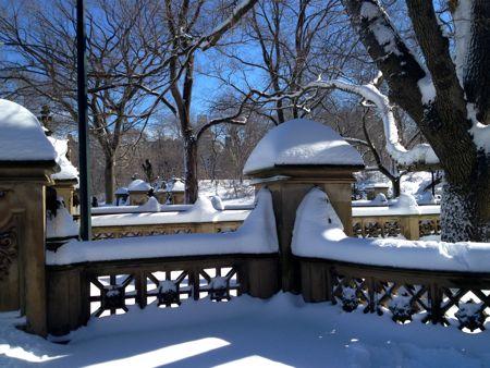 Central park snow3