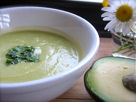 avocado vichyssoise